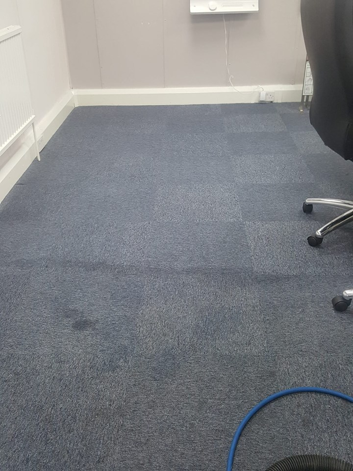 Carpet Cleaning Before And After Photo Gallery
