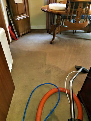 Carpet cleaning in Lymm, Cheshire